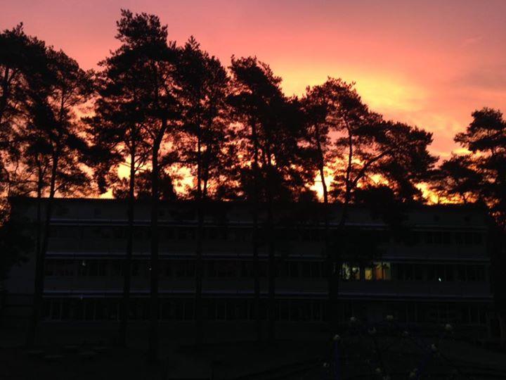 Die Sonne geht auf… über der Waldgrundschule. Allen einen sonnigen Tag!