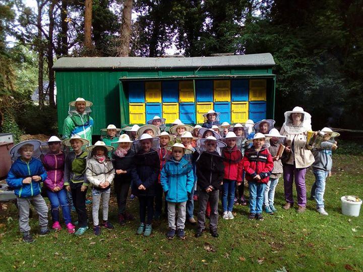 """Projekttag """"Biene und Honig"""""""