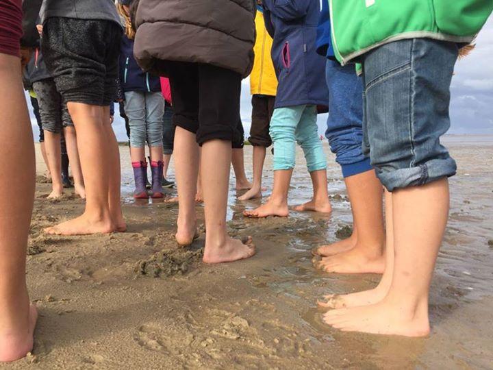 Viele Grüße von unseren 5. Klassen von der Nordsee!