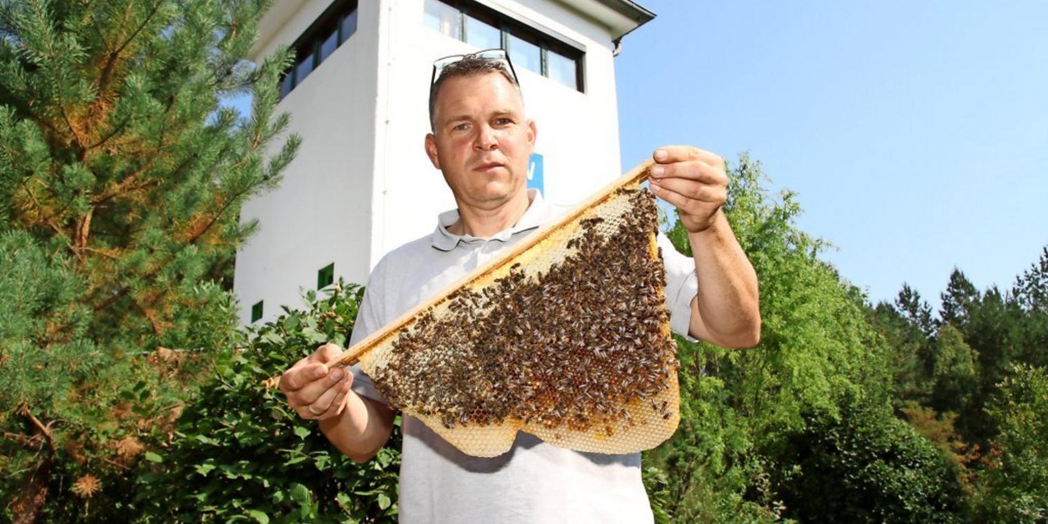 Bienen-Mann macht Kinder schlau