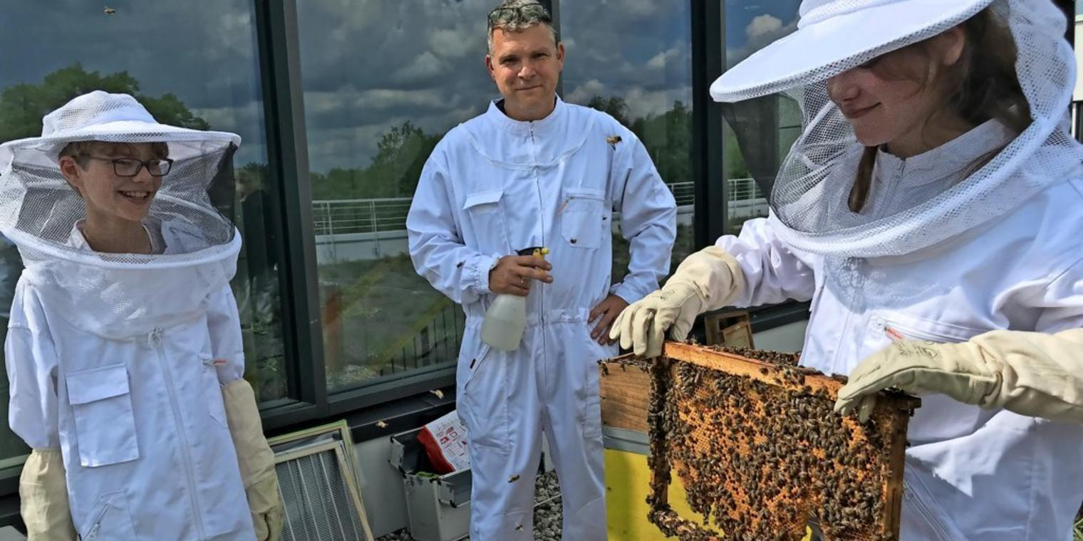 Die Bienenstadt rüstet auf